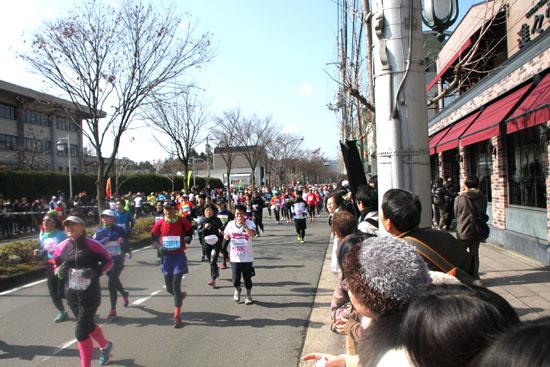 京都マラソン_e0048413_20422273.jpg