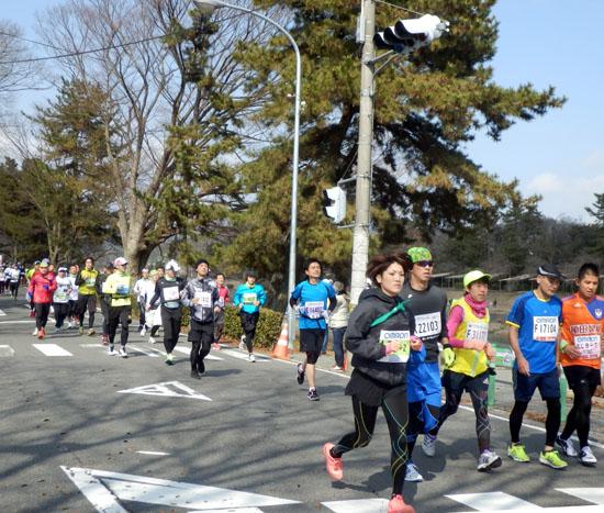 京都マラソン_e0048413_20425484.jpg
