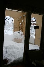 雪№2_c0146921_17441929.jpg