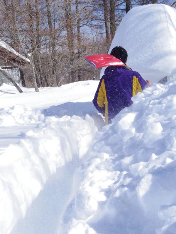 雪遊び_b0174425_126046.jpg