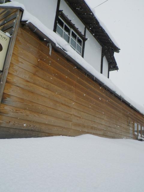 雪にも負けずミルオープン!_b0207642_1283665.jpg