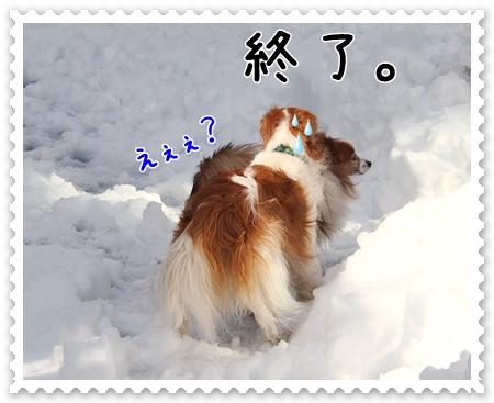 d0013149_21113148.jpg