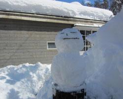 雪はあがりましたが_d0050155_23151812.jpg