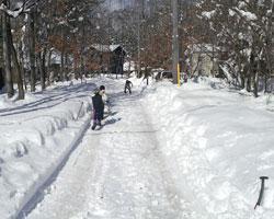 雪はあがりましたが_d0050155_23153465.jpg