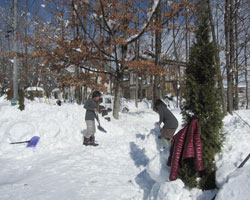 雪はあがりましたが_d0050155_2315448.jpg