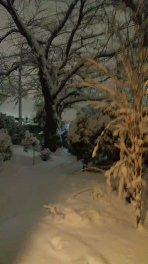 雪の週末_e0116960_19311796.jpg