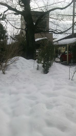 雪の週末_e0116960_19344333.jpg