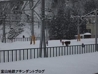 宇奈月温泉駅で、遭遇したのは・・・_a0243562_1684931.jpg
