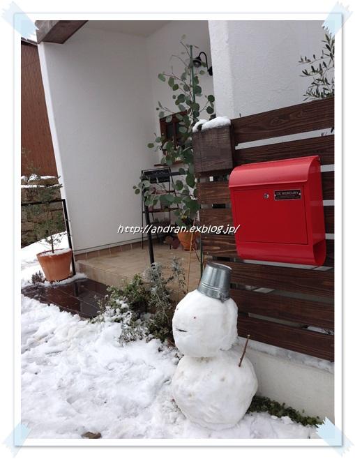 ミモザと雪_c0176271_2230538.jpg