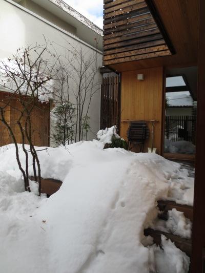 さらに大雪_c0310571_21172437.jpg