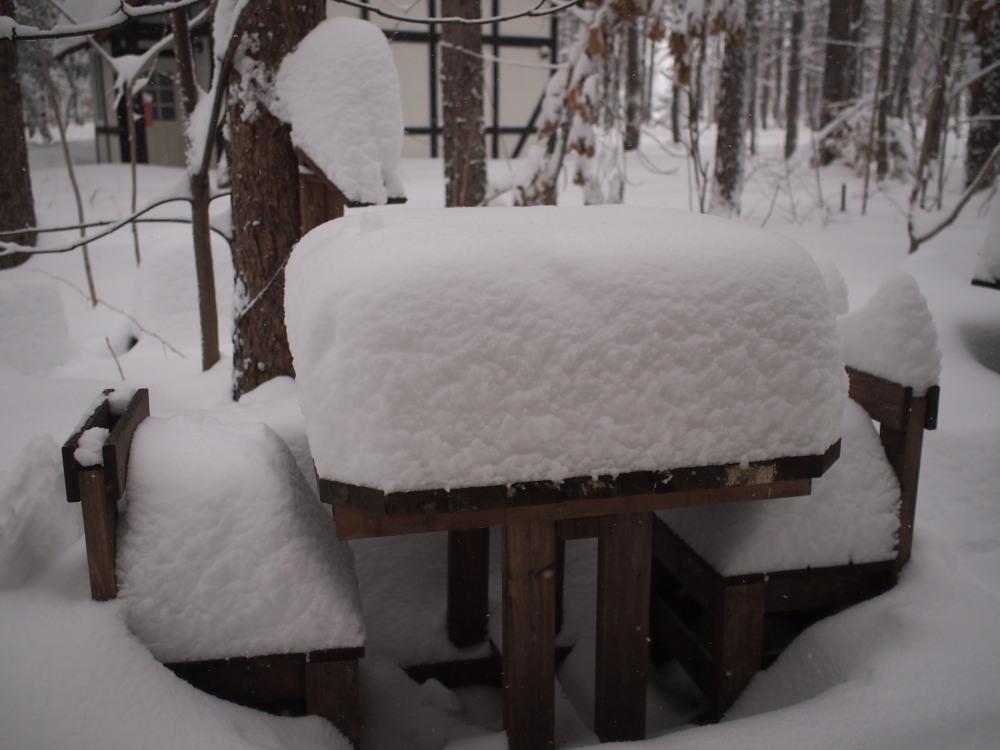 今年は雪が少ない?と思ってたら・・先週に引き続き大雪!_f0276498_16051658.jpg