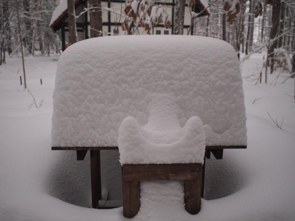 今年は雪が少ない?と思ってたら・・先週に引き続き大雪!_f0276498_16053262.jpg