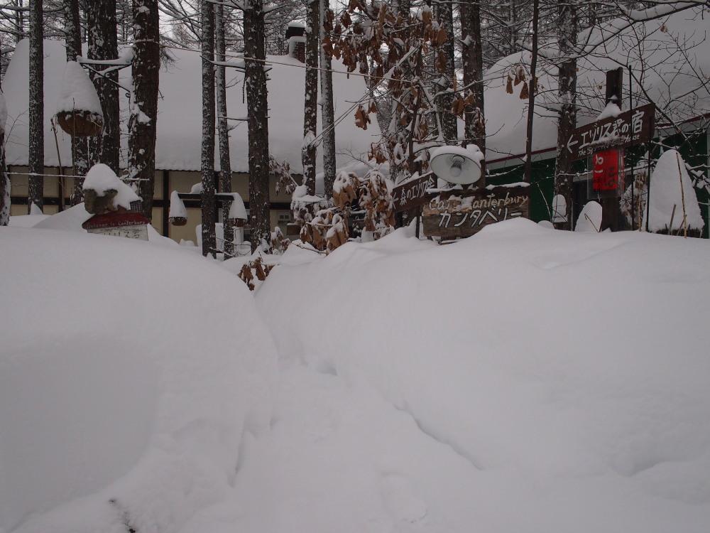 今年は雪が少ない?と思ってたら・・先週に引き続き大雪!_f0276498_16065253.jpg