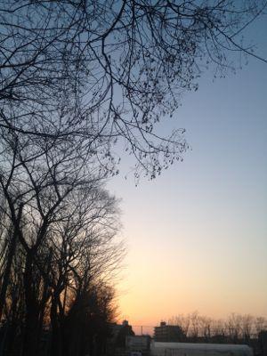 冬のソラ_e0239908_2034141.jpg