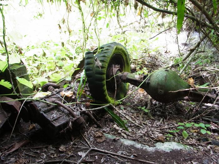 ペリリュー島の戦跡_d0116009_10441997.jpg