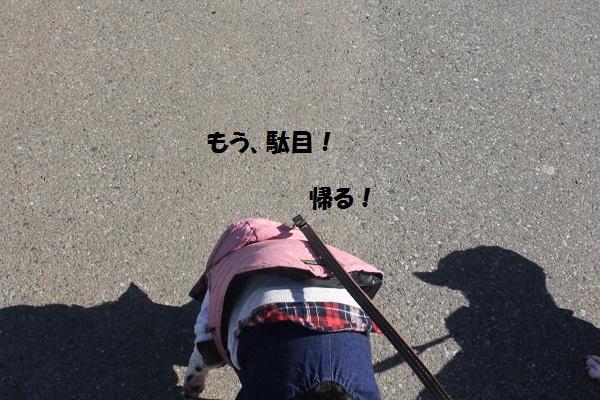 f0186509_22005926.jpg