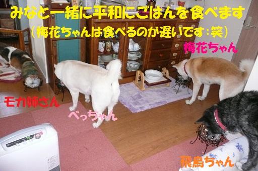 f0121712_15274765.jpg