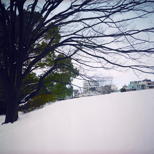 東京で一番好きな景色_b0212922_02422100.jpg