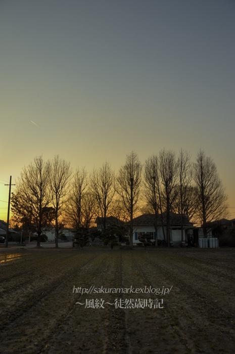 冬枯れの影法師。_f0235723_2083673.jpg