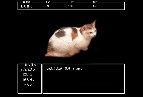 b0286744_15162088.jpg