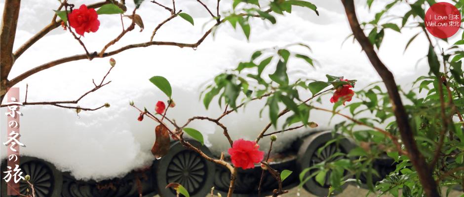 京の冬の旅2014 ~10 大原 三千院02 金色不動堂、雪の甍の波編~_b0157849_09303263.jpg