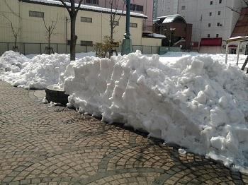 大雪・再び_a0061057_2156188.jpg