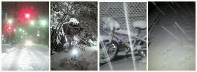 また雪!_a0091157_3175654.jpg
