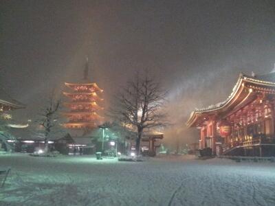 また雪!_a0091157_320559.jpg
