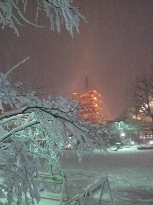 また雪!_a0091157_324964.jpg