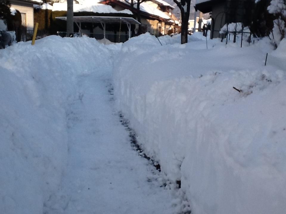 雪がいっぱ〜〜い_f0303858_22042926.jpg