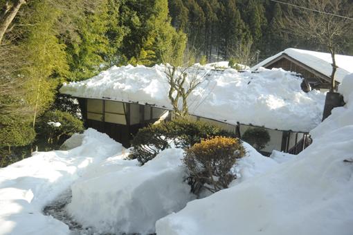 今年の雪_e0241305_16112740.jpg
