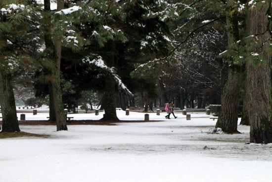 京都御苑 14雪げしき15_e0048413_1835991.jpg