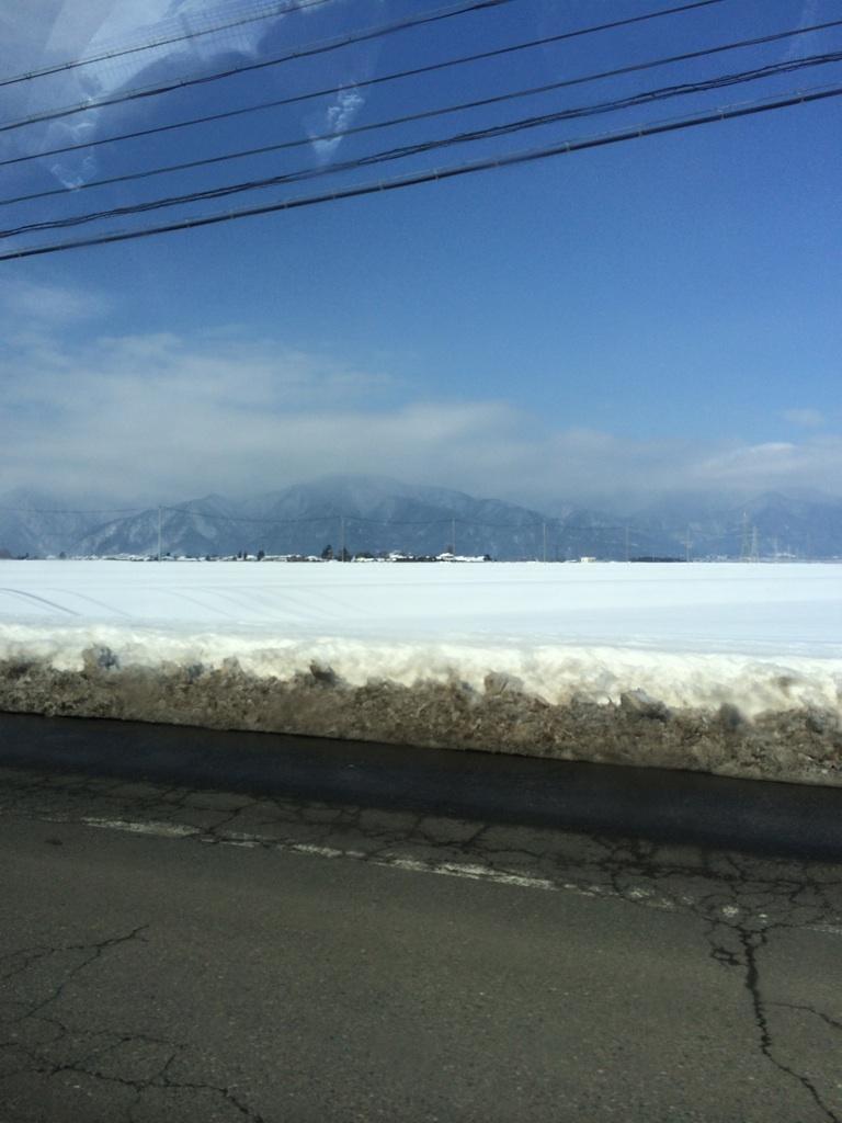 一面雪景色!_f0303858_22035737.jpg