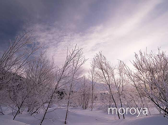 霧氷の朝_c0085877_5153532.jpg
