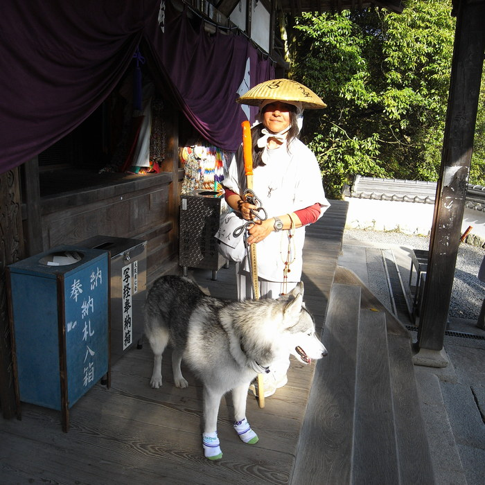 Memory of the second pilgrimage with husky HANA II_c0049299_22104510.jpg