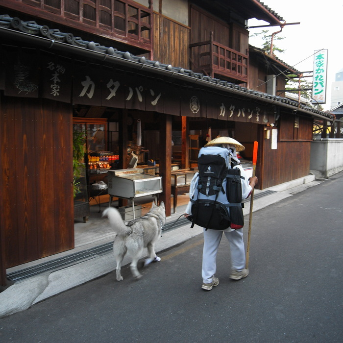 Memory of the second pilgrimage with husky HANA II_c0049299_22275472.jpg