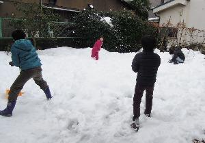 雪合戦_d0322102_11324222.jpg
