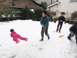 雪合戦_d0322102_11491271.jpg