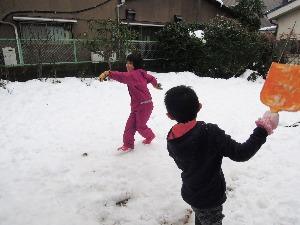 雪合戦_d0322102_11555770.jpg