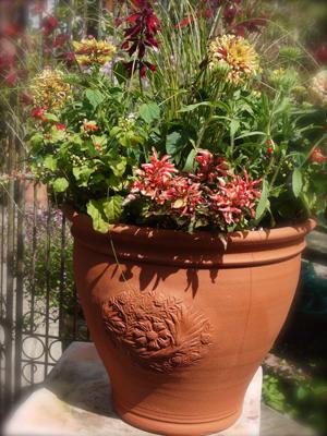Pots inspired by William Morris  2 Acorn Pot_d0229351_1195740.jpg