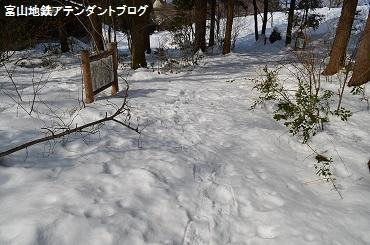 筋肉痛になるほど、楽しい冬の遊び_a0243562_1563653.jpg