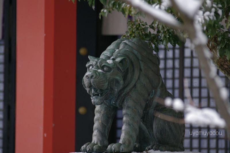 京都・雪の鞍馬寺・阿吽の寅_a0157263_22092120.jpg