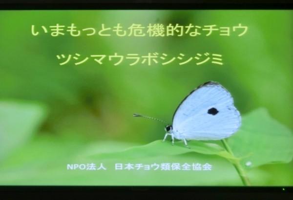 b0194593_16574971.jpg