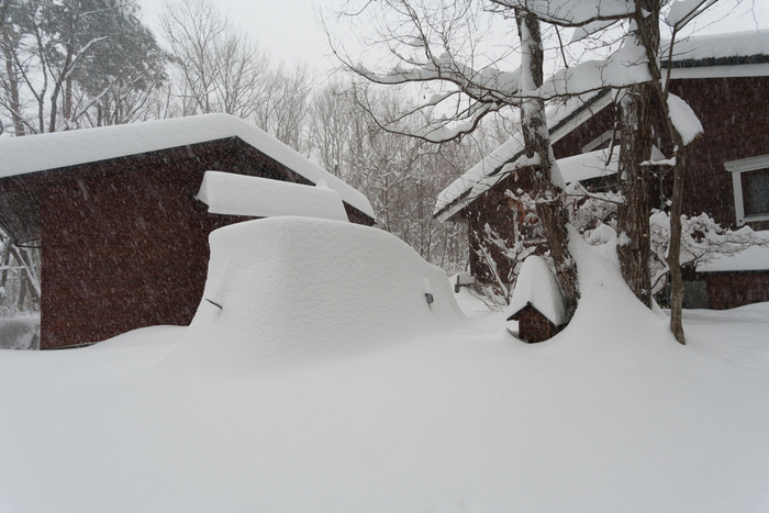 2/8 雪の無かった冬、いきなり60cmの積雪に_c0137403_1413326.jpg