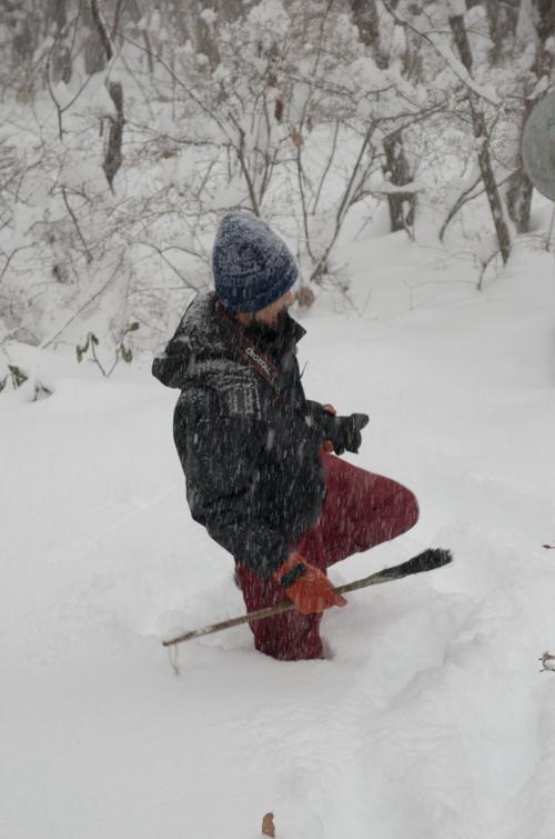 2/8 雪の無かった冬、いきなり60cmの積雪に_c0137403_14181430.jpg