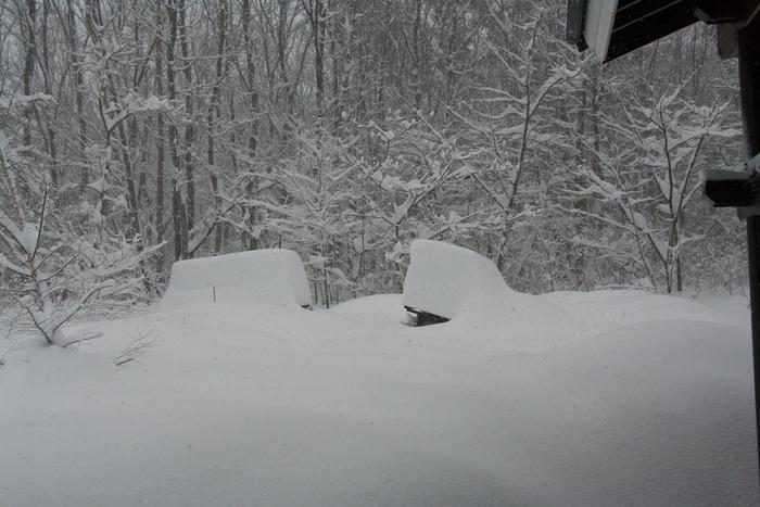 2/15 山梨県下記録的大雪、まさかここまで降るとは_c0137403_16212989.jpg