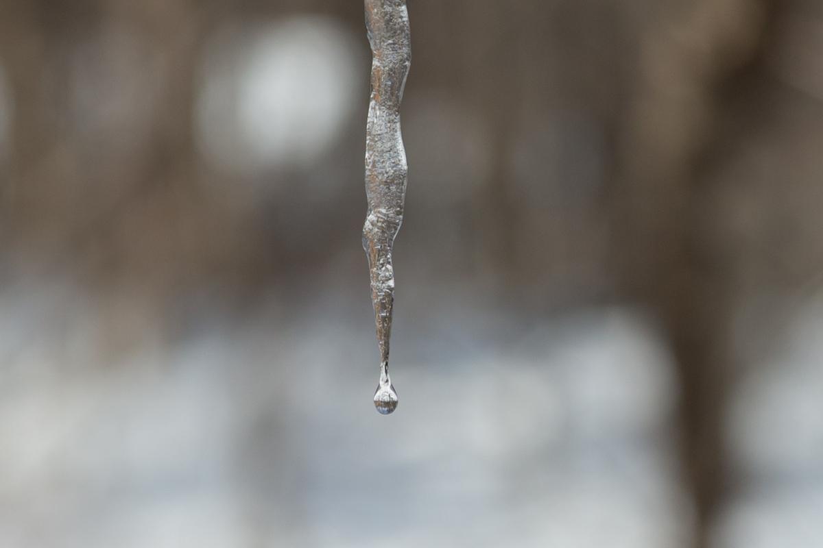 2/15 山梨県下記録的大雪、まさかここまで降るとは_c0137403_1647684.jpg
