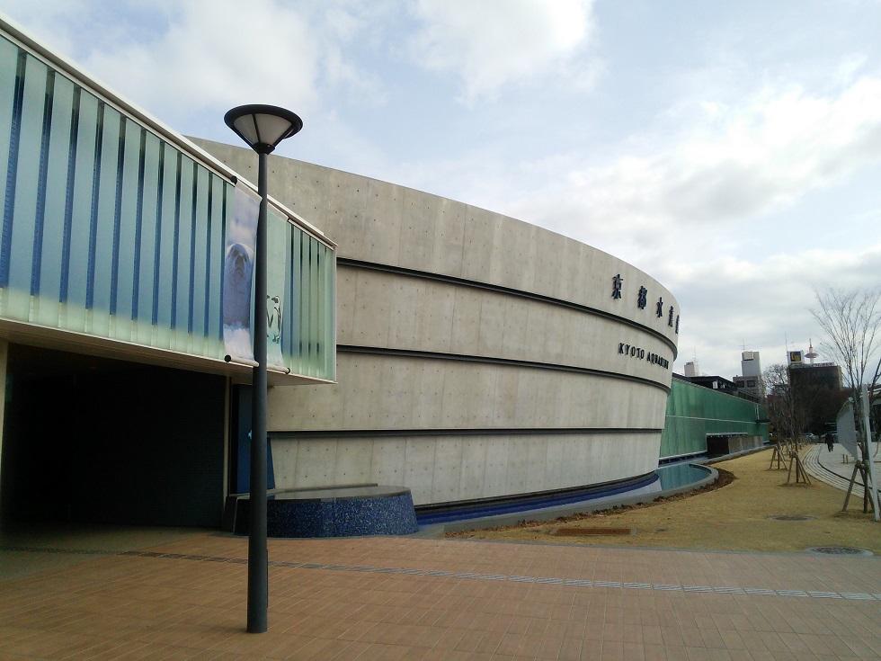 京都水族館で遊ぶ_c0010936_15242514.jpg