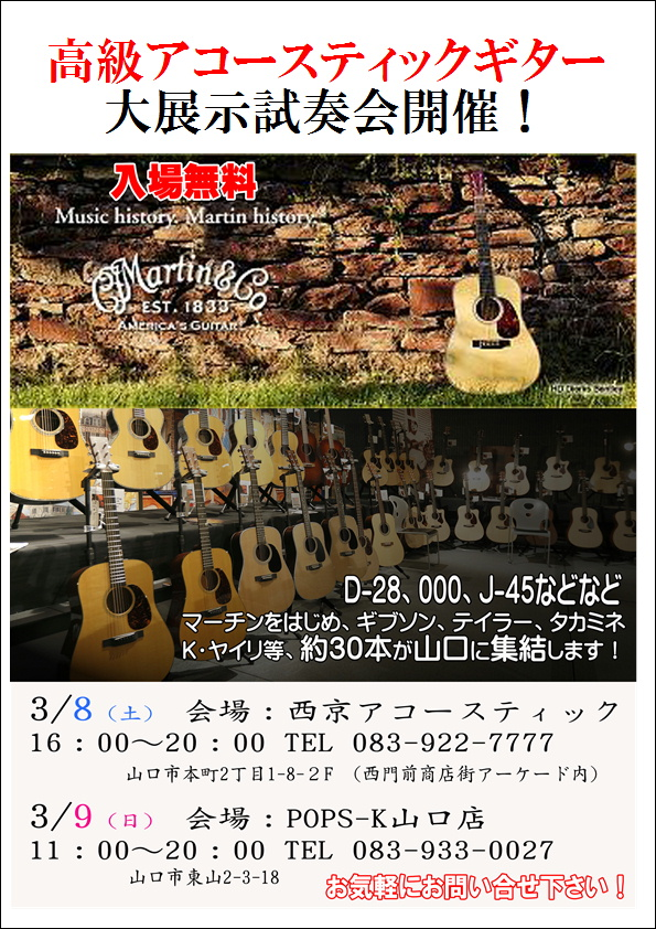 高級アコースティックギター大展示会_d0142472_187542.jpg