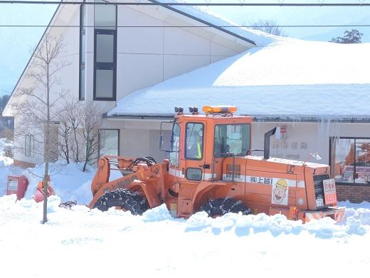 大雪の中の感動(@_@。_a0211886_1102953.jpg